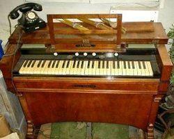 Harmonium, Orgel